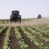 Аграрии Владимирской области обсудили стратегию развития сельского хозяйства в условиях вступления России в ВТО