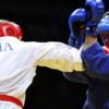 Во Владимире состоится Всероссийский турнир по рукопашному бою памяти актера Александра Дедюшко