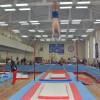 Легенды владимирской гимнастики вдохновят новых чемпионов
