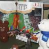 Выставка «33 медведя» в Палатах