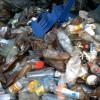 Выездной рейд по факту выброса бытовых отходов на муниципальную территорию