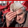 Андрей Шохин поддержал Волонтерский корпус в честь 70-летия Победы