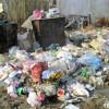 Светлана Орлова: «Порядок с мусором во Владимирской области будет наведён!»