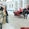 Катание на лошадях теперь и у «РусьКино»