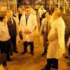 Министр сельского хозяйства РФ Николай Фёдоров ознакомился с производством и продукцией владимирского Комбината «Тепличный»