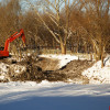 Соловьиный пруд: специалисты просят Андрея Шохина об отсрочке