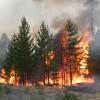 Алексей Конышев: «Наша задача сделать все возможное, чтобы предотвратить пожары»